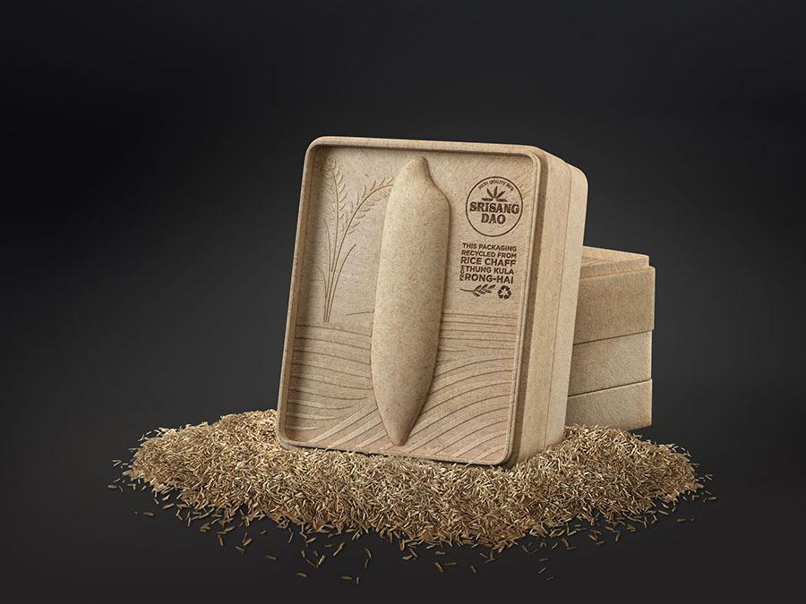 Thiết kế bao bì gạo